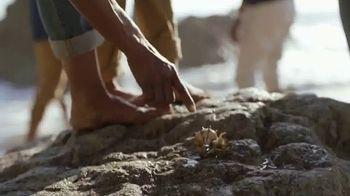 2020 Hyundai Palisade TV Spot, 'Tide Pools' Song by Bibio [T1] - Thumbnail 7