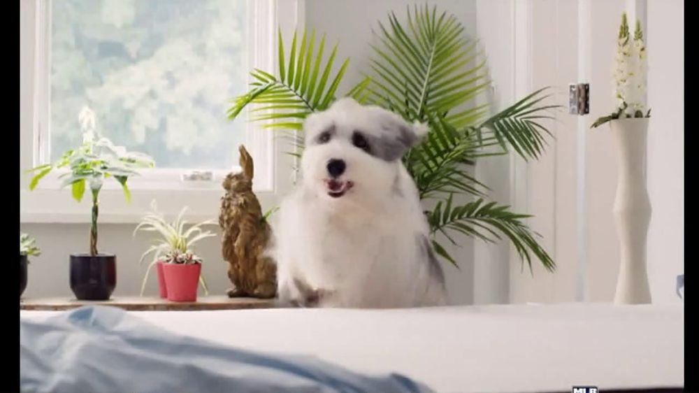 Casper Tv Commercial Keep Cool Ispot Tv
