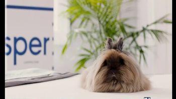 Casper TV Spot, 'Keep Cool' - Thumbnail 8