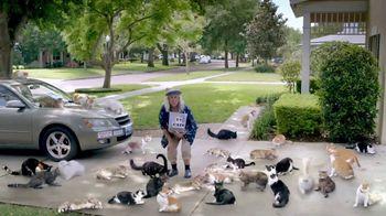 Optimum Altice TV Spot, 'Crazy Cat  Neighbour'