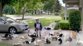 Optimum Altice TV Spot, 'Crazy Cat  Neighbour' - Thumbnail 7