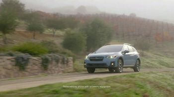 2019 Subaru Crosstrek TV Spot, 'Love Is out There' [T2] - Thumbnail 1
