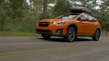 2019 Subaru Crosstrek TV Spot, 'Love Is out There' [T2] - Thumbnail 3