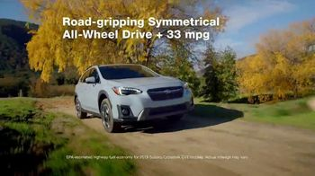 2019 Subaru Crosstrek TV Spot, 'Love Is out There' [T2] - Thumbnail 4