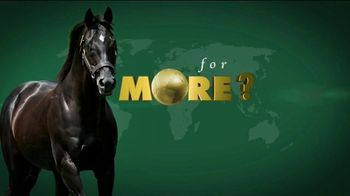 WinStar Farm, LLC TV Spot, 'More Than Ready'