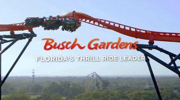 Busch Gardens End of Summer Sale TV Spot, 'Tigris and Adventure Island' - Thumbnail 6