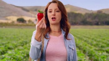 Panera Bread TV Spot, 'Strawberry Season'