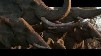 The Lion King - Alternate Trailer 80