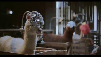 Samsung Galaxy Note10 TV Spot, 'Alpaca' Song by Incredible Bongo Band - Thumbnail 3