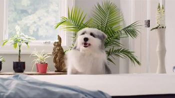 Casper TV Spot, 'The Coolest Mattress Review' - Thumbnail 4