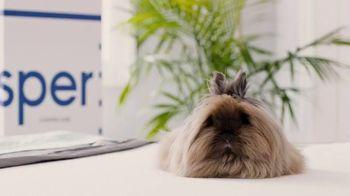 Casper TV Spot, 'The Coolest Mattress Review' - Thumbnail 9