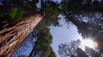 Arbor Day Foundation TV Spot, 'Time For Trees'