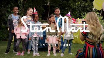 Stein Mart TV Spot, 'Time for Cake: Kids' - Thumbnail 8