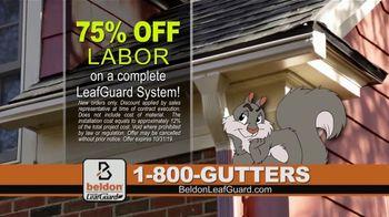 Beldon LeafGuard TV Spot, 'Don't Risk a Fall: 75 Percent Off Labor' - Thumbnail 5