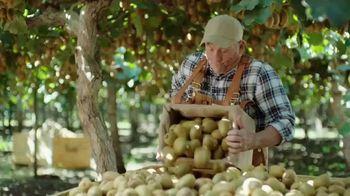 Senokot Kiwi Balance TV Spot, 'Hooray for Regularity!' - Thumbnail 7