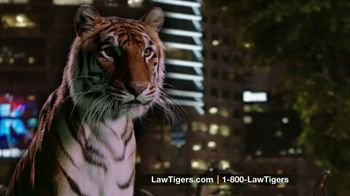 Law Tigers TV Spot, 'Come to Life' - Thumbnail 7