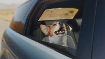 2020 Range Rover Evoque TV Spot, 'A Dog's Dream' Song by Dom James [T1] - Thumbnail 3