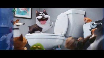 DIRECTV Cinema TV Spot, 'The Secret Life of Pets 2: Illumination Movies' - Thumbnail 8