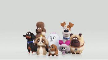The Secret Life of Pets 2 - Alternate Trailer 101