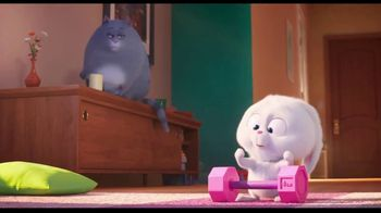 The Secret Life of Pets 2 - Alternate Trailer 107