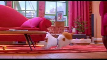 The Secret Life of Pets 2 - Alternate Trailer 109