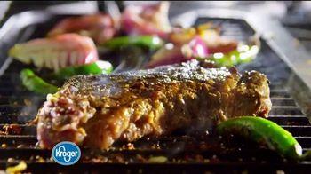 The Kroger Company TV Spot, 'A Fresh Idea'