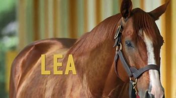 Claiborne Farm TV Spot, 'Lea: Best of His Generation' - Thumbnail 1