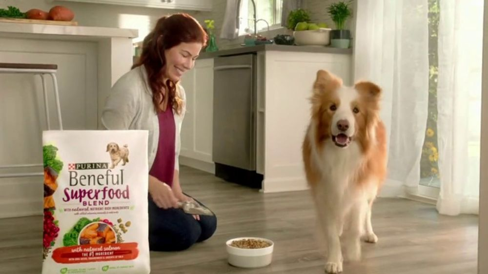 Purina Beneful Superfood Blend Tv Commercial Nutrient Rich