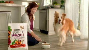 Purina Beneful Superfood Blend TV Spot, 'Nutrient-Rich' - Thumbnail 1