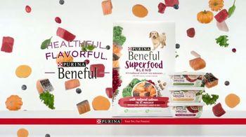 Purina Beneful Superfood Blend TV Spot, 'Nutrient-Rich' - Thumbnail 8