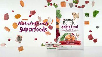 Purina Beneful Superfood Blend TV Spot, 'Nutrient-Rich' - Thumbnail 3