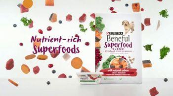 Purina Beneful Superfood Blend TV Spot, 'Nutrient-Rich' - Thumbnail 4