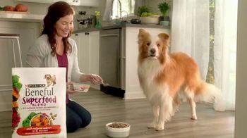 Purina Beneful Superfood Blend TV Spot, 'Nutrient-Rich' - Thumbnail 5