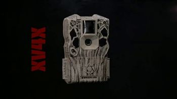 Stealth Cam TV Spot, 'These Woods Have Eyes' - Thumbnail 1
