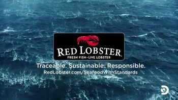 Red Lobster TV Spot, 'Discovery Channel: Protecting Our Oceans' Ft. Keith Colburn and Jake Anderson - Thumbnail 9