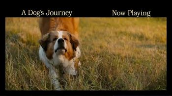 A Dog's Journey - Alternate Trailer 40