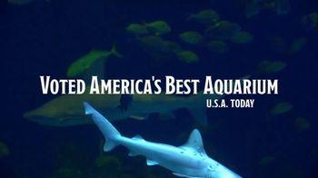 Wonders of Wildlife TV Spot, 'Take the Journey' - Thumbnail 8