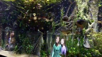Wonders of Wildlife TV Spot, 'Take the Journey' - Thumbnail 6