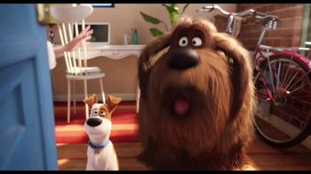 The Secret Life of Pets 2 - Alternate Trailer 44