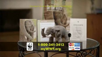 World Wildlife Fund TV Spot, 'Elephants' - Thumbnail 8