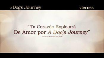 A Dog's Journey - Alternate Trailer 39