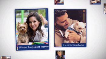 Clear the Shelters TV Spot, 'Telemundo 39: Desocupar los albergues' [Spanish] - Thumbnail 2