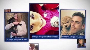 Clear the Shelters TV Spot, 'Telemundo 39: Desocupar los albergues' [Spanish] - Thumbnail 3
