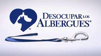 Clear the Shelters TV Spot, 'Telemundo 39: Desocupar los albergues' [Spanish] - Thumbnail 4