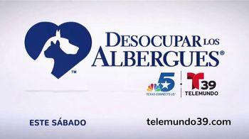 Clear the Shelters TV Spot, 'Telemundo 39: Desocupar los albergues' [Spanish] - Thumbnail 5