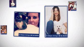 Clear the Shelters TV Spot, 'Telemundo 39: Desocupar los albergues' [Spanish] - Thumbnail 7