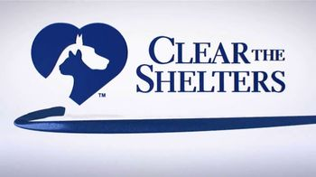 Clear the Shelters TV Spot, 'NBC 3 Cleveland: Find Your Best Friend' - Thumbnail 10