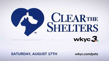 Clear the Shelters TV Spot, 'NBC 3 Cleveland: Find Your Best Friend' - Thumbnail 2