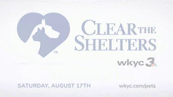 Clear the Shelters TV Spot, 'NBC 3 Cleveland: Find Your Best Friend' - Thumbnail 3