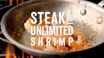 Outback Steakhouse Steak & Unlimited Shrimp TV Spot, 'More Than You Imagined: Lunch' - Thumbnail 5